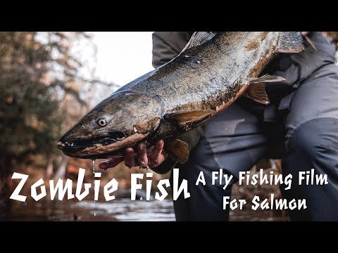 """""""Zombie Fish"""" - A Fly Fishing Film For Late Season Salmon"""
