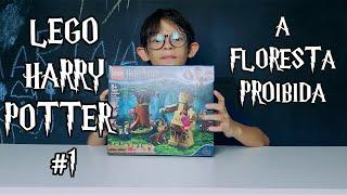 LEGO HARRY POTTER #1 - A FLORESTA PROIBIDA #75967