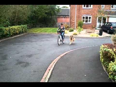 video-2011-10-21-11-34-17