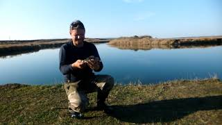 Рыбалка с Алексеем от Пал Палыча 6 11 19