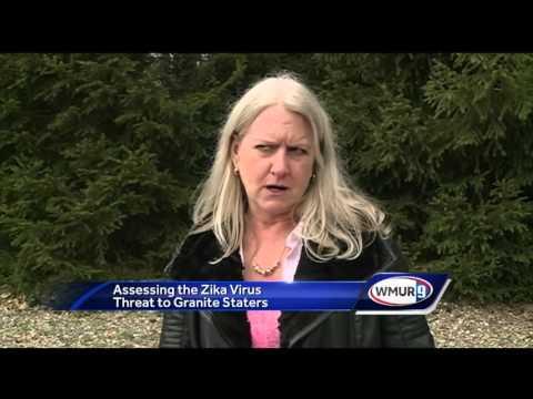 Experts keep eye on Zika threat in New Hampshire