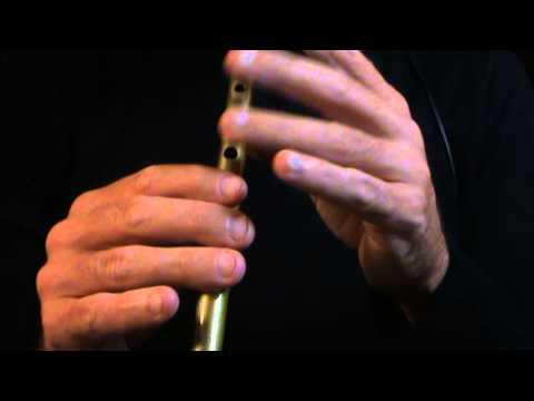 The Bank of Ireland (Reel) - Irish Tin Whistle Tune
