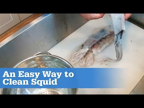 How to Clean a Fresh Squid