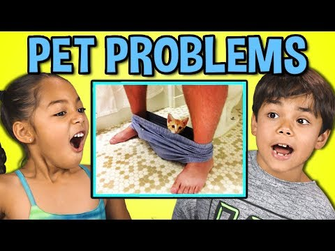 10 PETS WITH PERSONAL SPACE PROBLEMS (React)