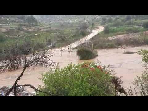 חילוץ הנהגים בעמק הארזים