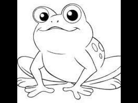 Learn How To Draw Sketch Frogs Ii Belajar Cara Menggambar Sketsa Katak Kodok