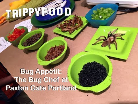 Bug Appétit - The Bug Chef at Paxton Gate PDX - Trippy Food Episode 144