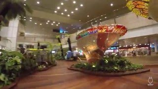 5 Minute tour in Singapore Changi Airport
