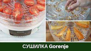Обзор: Сушилка Для Овощей Gorenje FDK500GCW Мой Отзыв + Примеры