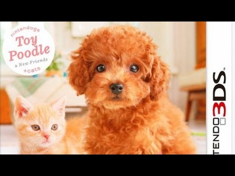 Nintendogs Cats Toy Poodle