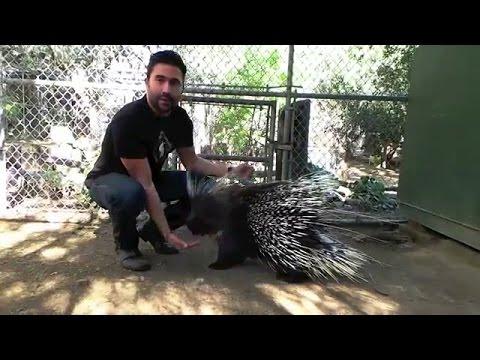 Ignacio Serricchio with Penelope for the Wildlife Waystation