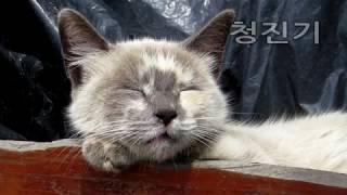 3시간 잠오는음악,수면음악,불면증치료,잠잘오는노래,잠안올때듣는음악 102탄!!! (Music Meditation,Sleeping Music,Relaxing Music)
