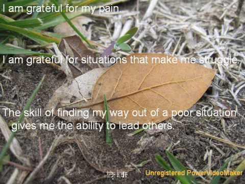 I am Grateful by Monica O. Krause