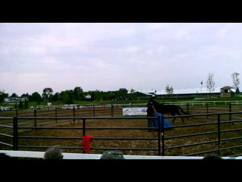 Canada's Outdoor Equine Expo with Mike Hughes, Auburn California