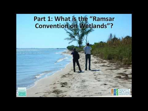 Ramsar Convention Conference Of The Parties COP