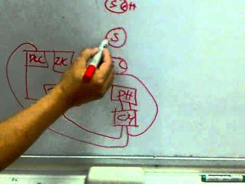hqdefault siemens fire alarm system 2 youtube siemens xls wiring diagram at gsmx.co