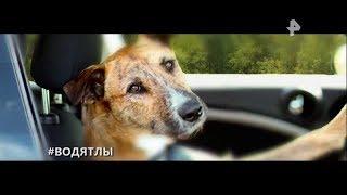 """""""ВОДИТЬ ПО-РУССКИ""""(720) РенТВ. Видео с регистраторов! (17.07.18)"""