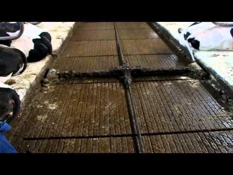 Emissiearme Duurzaamheidsvloer Berkel Beton 1