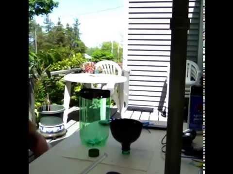 Jacquelyn's Aquaponics experiment using a 2 liter soda bottle.
