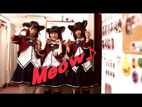 Osaka Otaku TV Japan Shop File Vol.1-1 NEKOSUTA