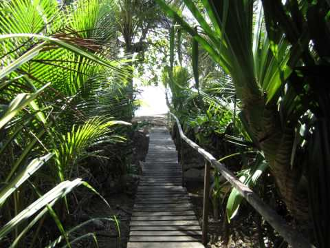 2014-embodied-soul-yoga-retreats-in-costa-rica-with-abby-tucker