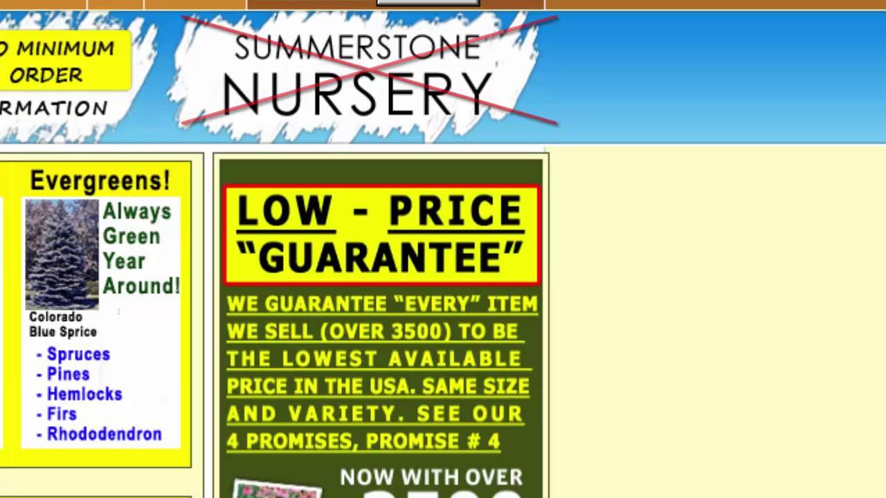 Summerstone Nursery Crooks