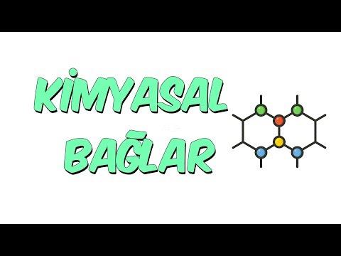 Kimyasal Bağlar | 8.1 Kampı