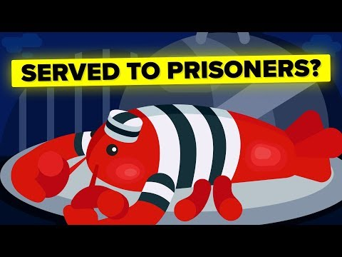 Why Were Lobsters Once Prison Food? thumbnail