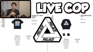 PALACE TRI FERG LIVE COP!?! (PALACE AUTUMN 2018 MANUAL LIVE CHECKOUT)