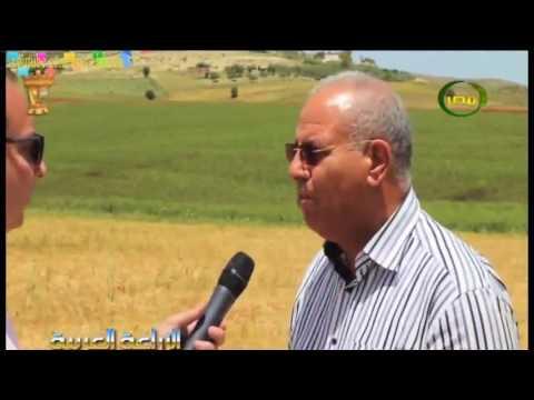 زراعة الحبوب والبقوليات والاعلاف في ريحانة فى تونس