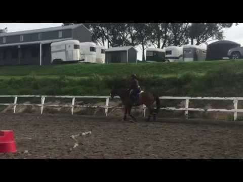 Chilean express schooling April/may 2016