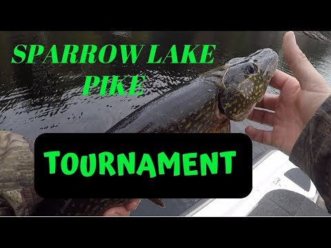 Sparrow Lake Tournament 2019
