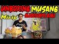 Unboxing Musang Langka Mirip Marsupilami  Mp3 - Mp4 Download