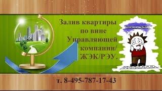 Залив квартиры по вине Управляющей Компании(, 2016-04-02T18:43:46.000Z)