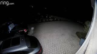 Mahwah Car Thief