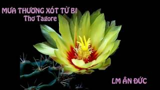 THƠ TAGORE - KHI TIM CON KHÔ CỨNG - LM ÂN ĐỨC
