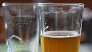 Převažují výhody užívání alkoholu nad jeho riziky?