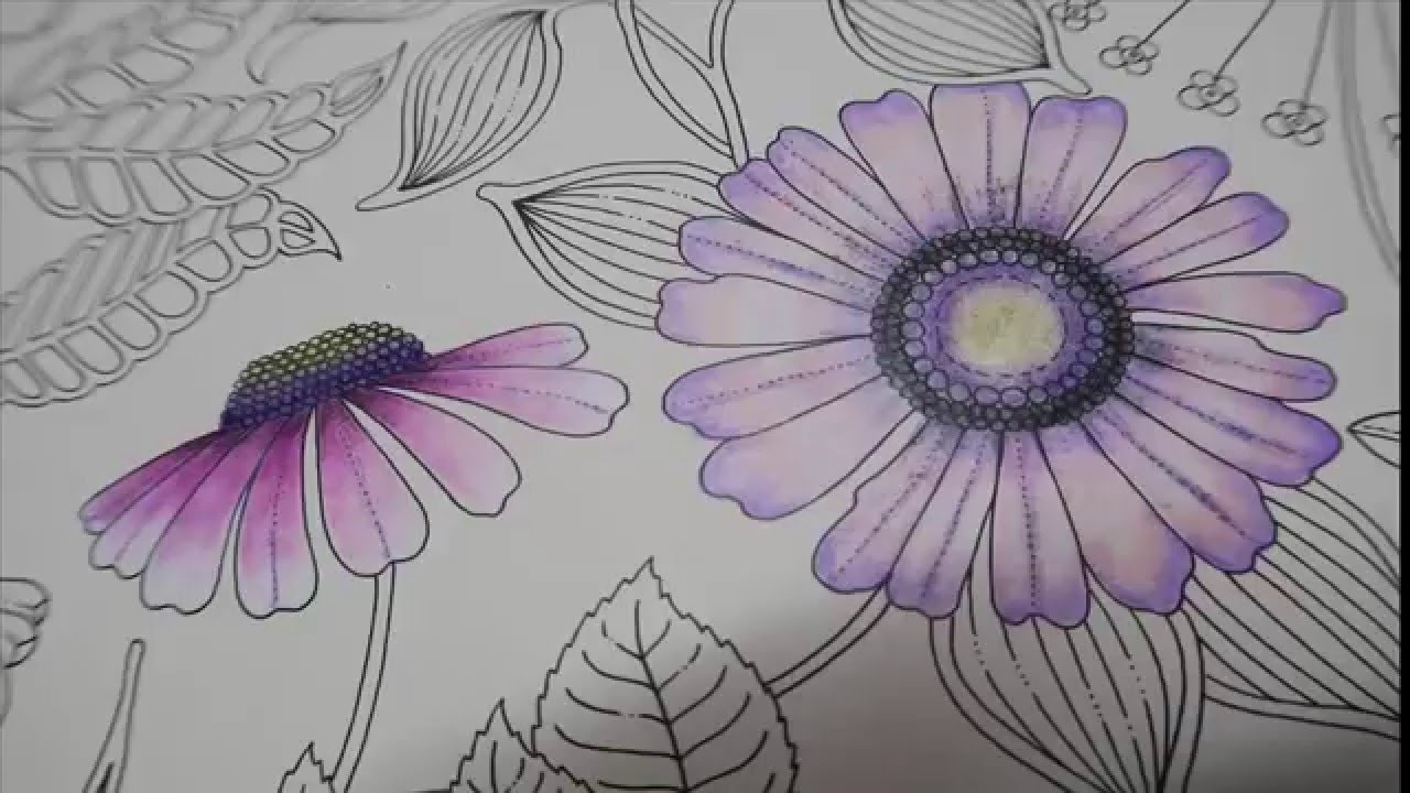 Secret Garden Coloring Book Pink Flowers Youtube
