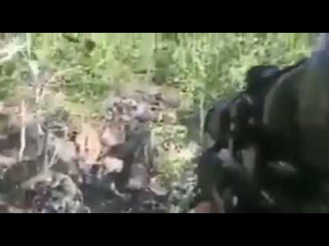 Turkish soldier kills a terrorist
