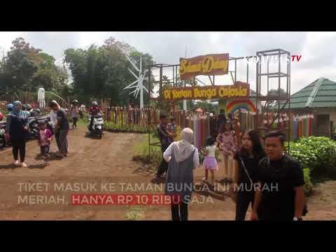 Taman Bunga Ala Eropa di Semarang