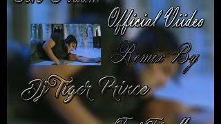 Tere Naam Remix Song | Salman Khan | Dj Tiger Prince |