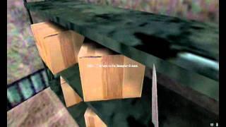 Half-life - Afraid of Monsters Director