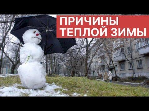 Вопрос: Как скажется теплая зима 2020 в Центральной России на урожай меда?