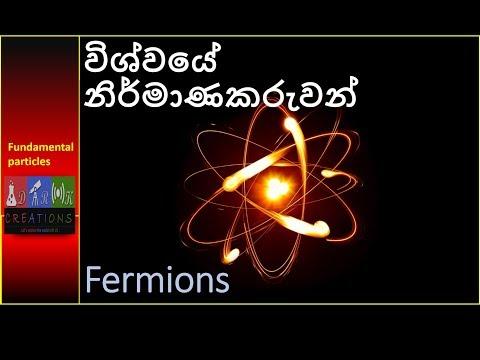 More about Fundamental Particles(මොනවද මේ Fermions)