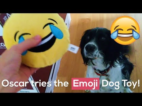 Oscar tries out the Crying-laughing EMOJI Dog Toy!