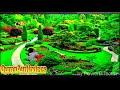Nail Nadhi than olangal Original mappilapattu മാപ്പിളപ്പട്ട് editing video