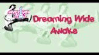 Dreaming Wide Awake-Full with lyrics-The American Mall