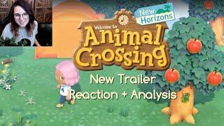 New Trailer Reaction + Analysis   Animal Crossing: New Horizons