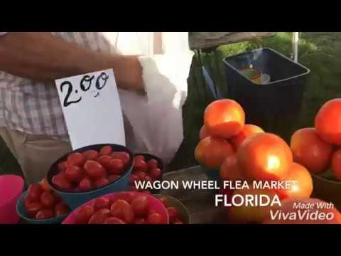 Wagon Wheel Flea Market Florida