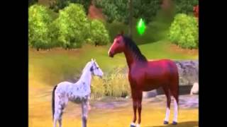 Sims 3 - The Foal That Never Was: TRAILER